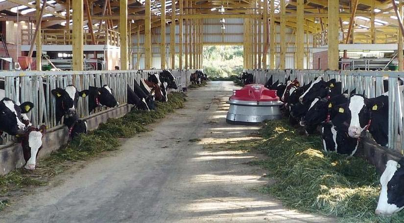 Stall mit Tierfütterung